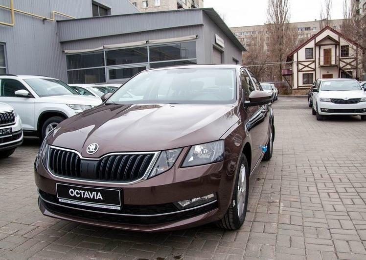 Shkoda Octavia 2020 фото 1