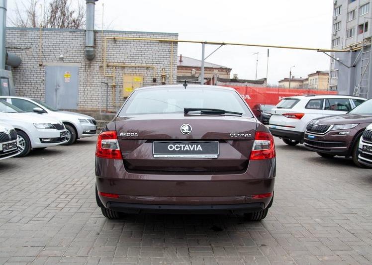 Shkoda Octavia 2020 фото 5